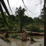 haiti-update-3