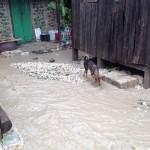 haiti-update-5